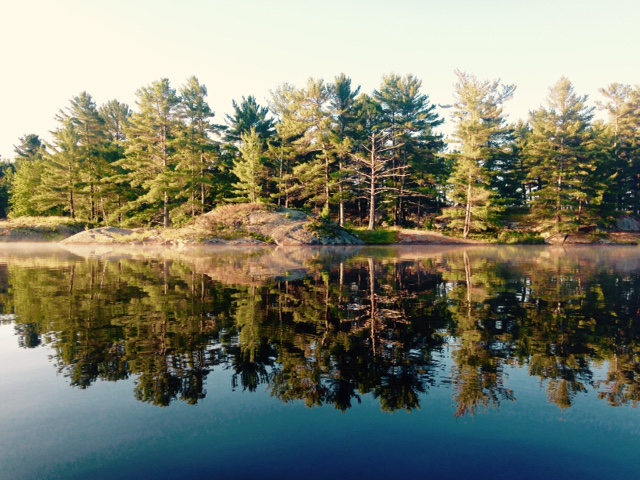 mirror image from Gurd Lake morning paddle