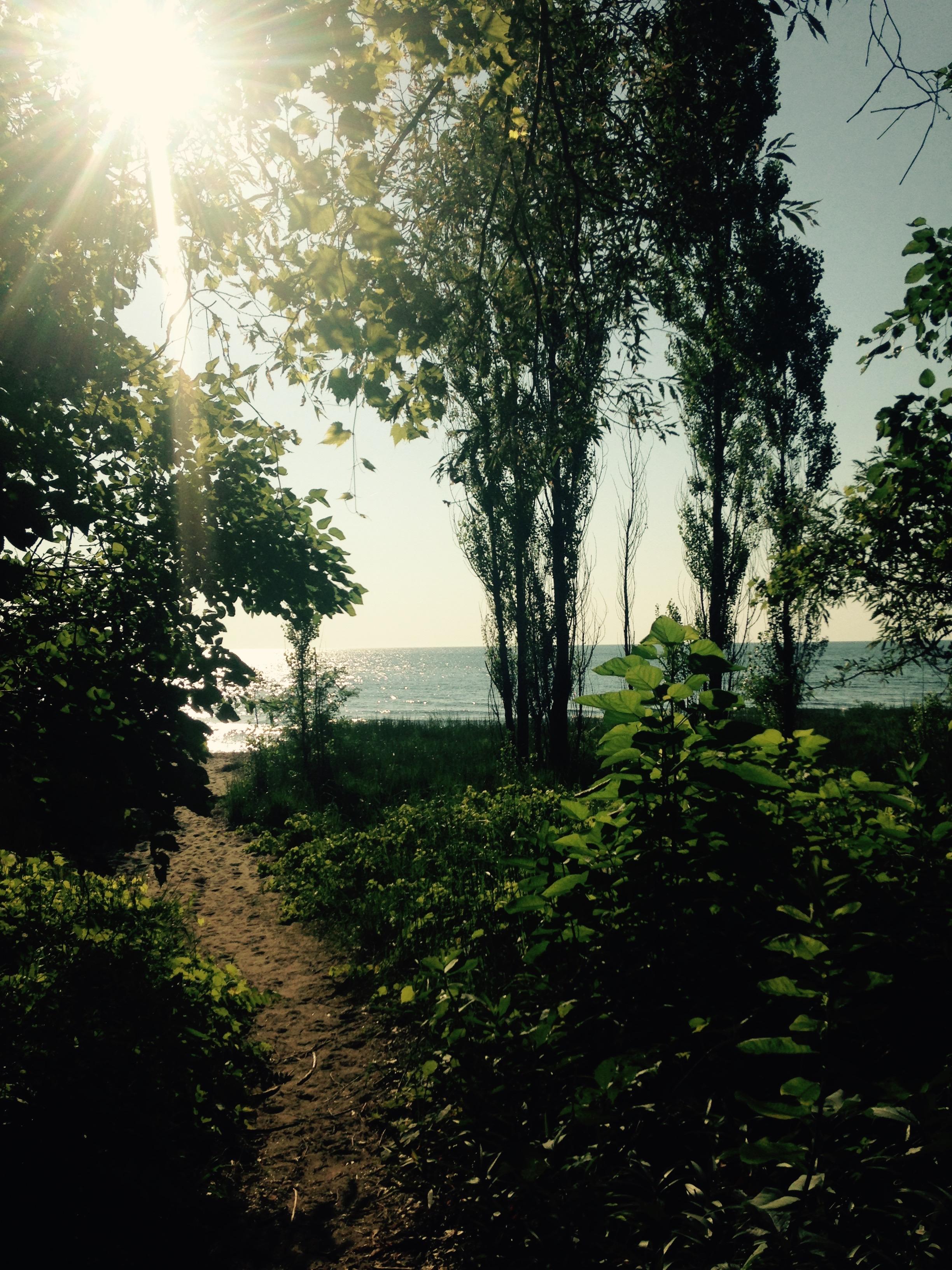 beach access #3