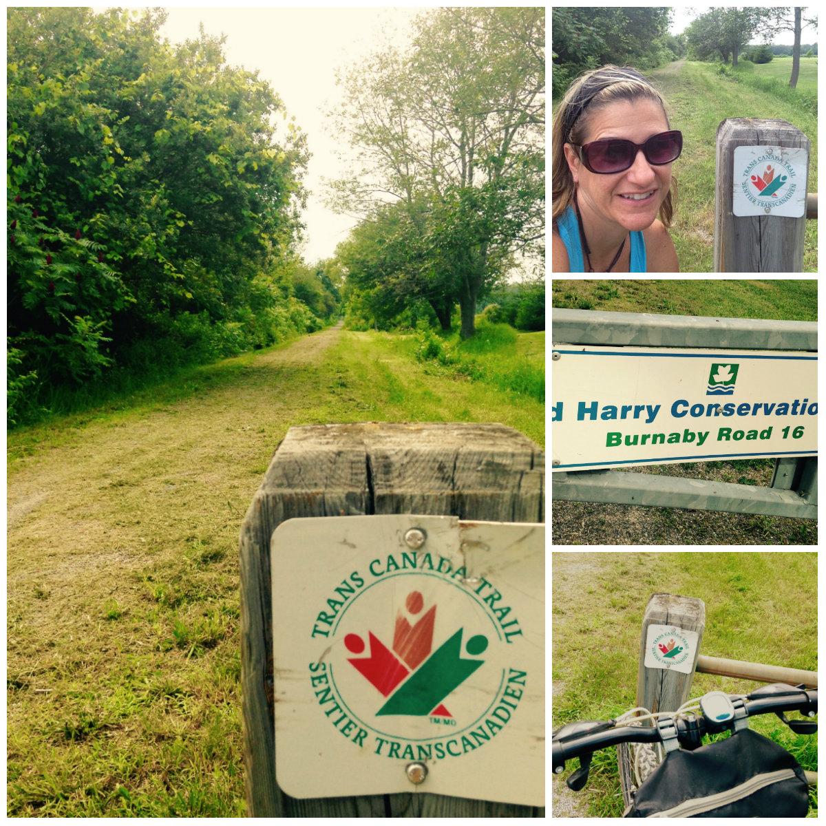 tc trail july 12, 2015 burnaby to burkett